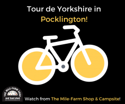 Tour de Yorkshire in Pocklington